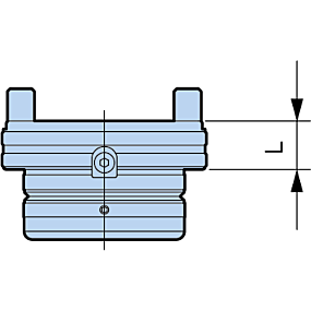 Adapter (optional)